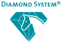 diamond system transparent