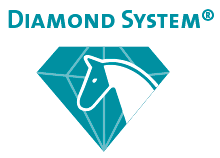 diamond system logo