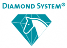 diamond system logo